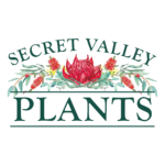 Secret Valley Plants_logo web