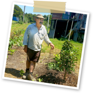 Mountain Produce David Timms Harbourside markets